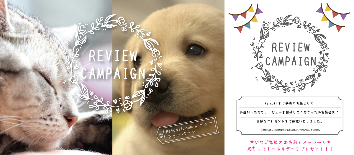 REVIEW CAMPAIGN